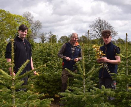 Christmas comes early for Homewood sixth formers