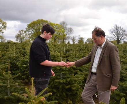 Edward Barham examines a young tree with Lewis