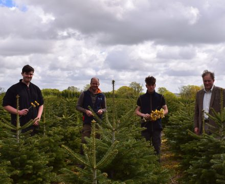 Lewis, David Purnell, Oliver & Edward Barham amongst the trees planted in 2016